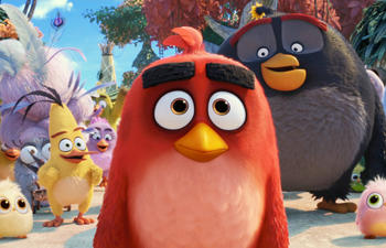 Sorties à la maison : The Angry Birds Movie 2 et 47 Meters Down: Uncaged