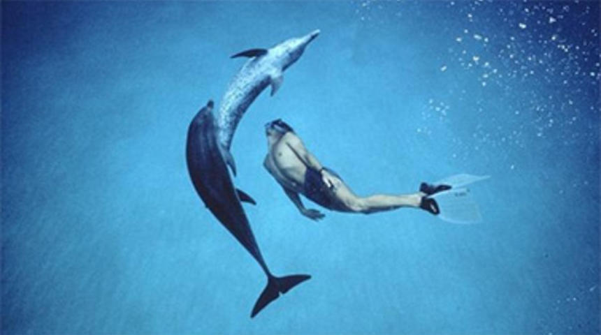 Disney veut transformer le documentaire Dolphin Boy en un film narratif